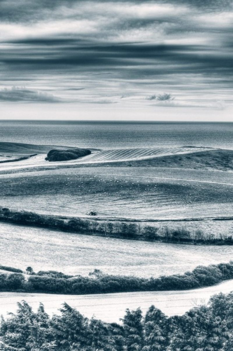 The Curves of Kimmeridge